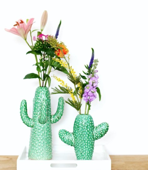 big-old-cactus