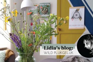 furnlovers-facebook-blog-Lidia-vedder