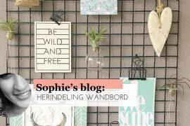 sophieblog