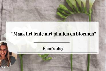 Elinesblog