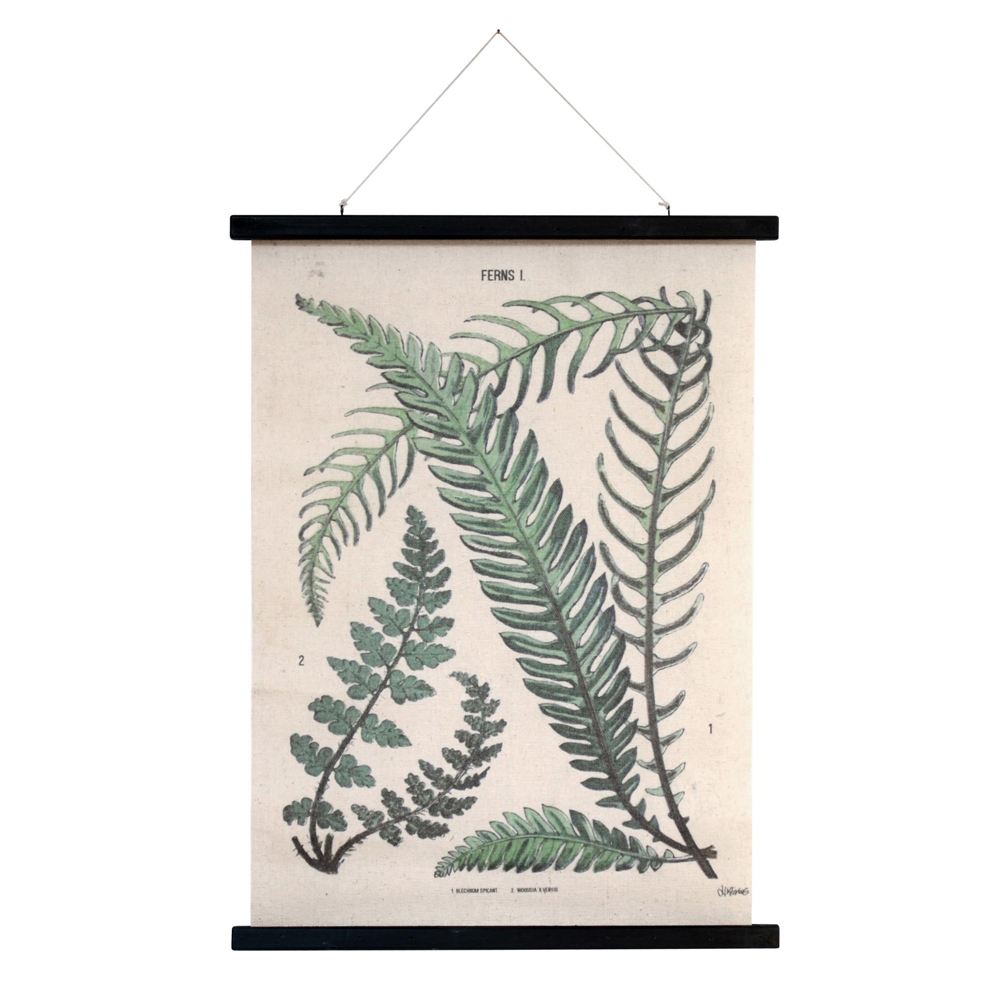 hkliving-botanische-schoolplaat