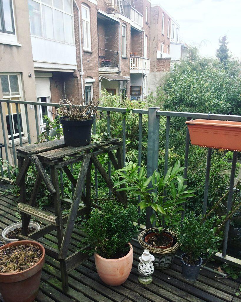 Maak je terras klaar voor het voorjaar for Maak een overdekt terras