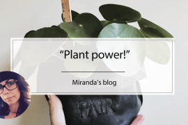 Blogmiranda