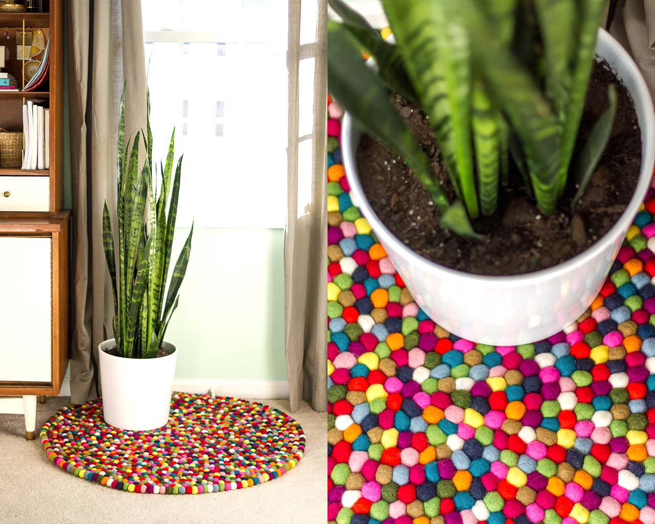 mooie-plant-op-gevoeld-bal-tapijt
