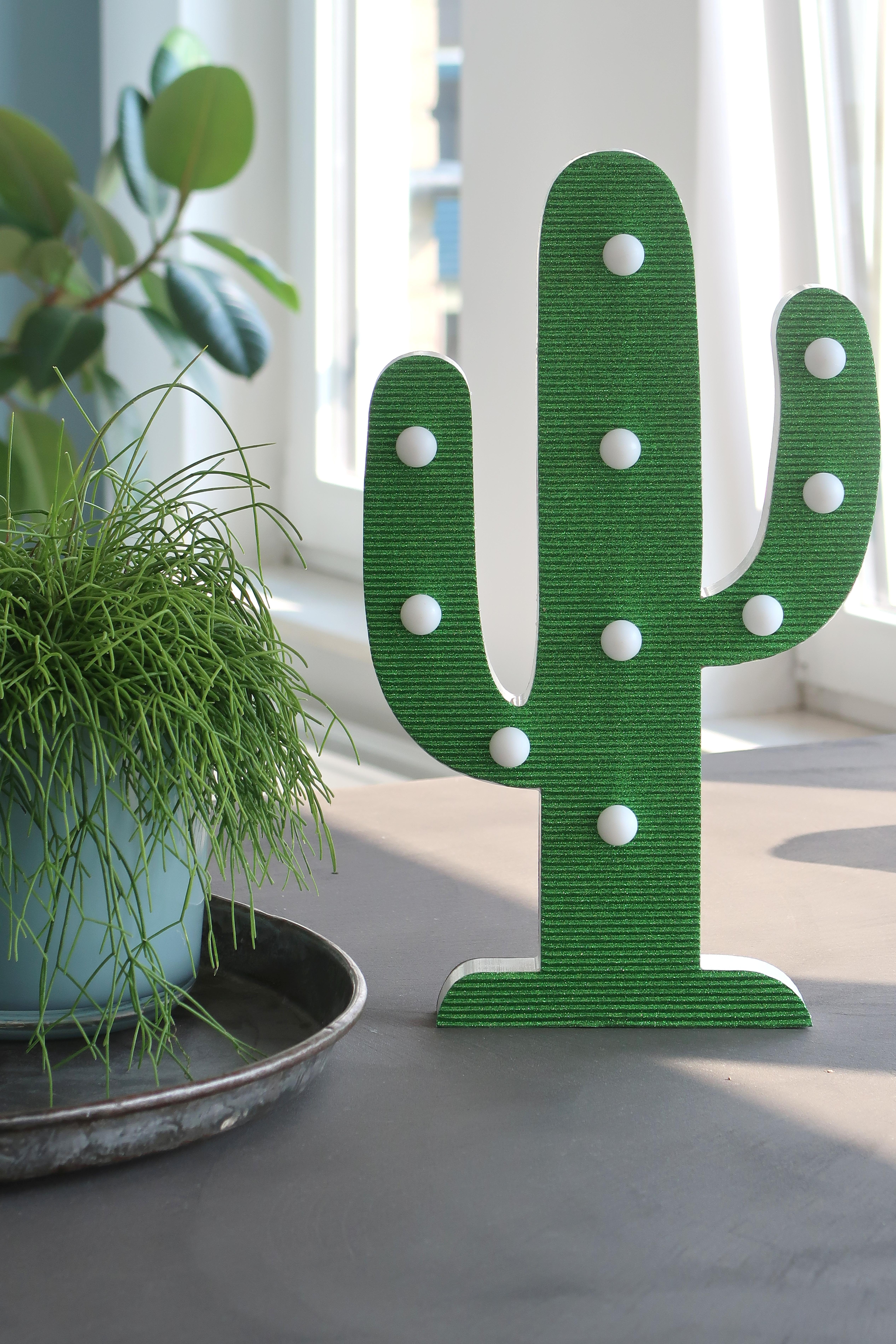 Lesara-cactus2
