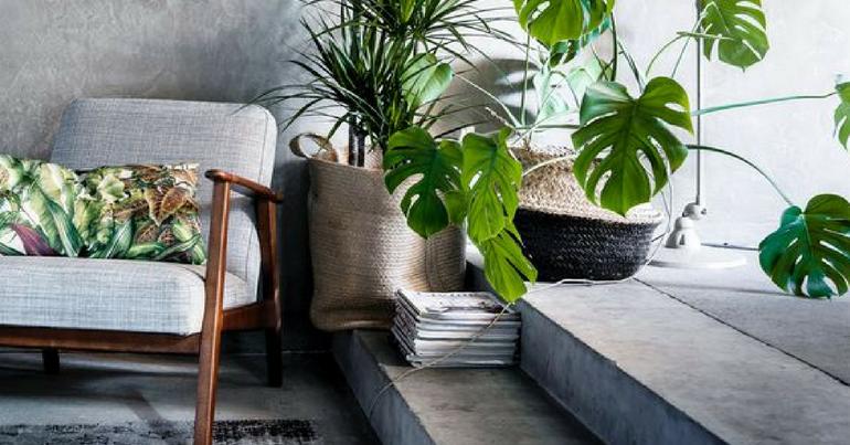 Urban jungle in huis furnlovers