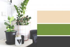 kleuren-combo