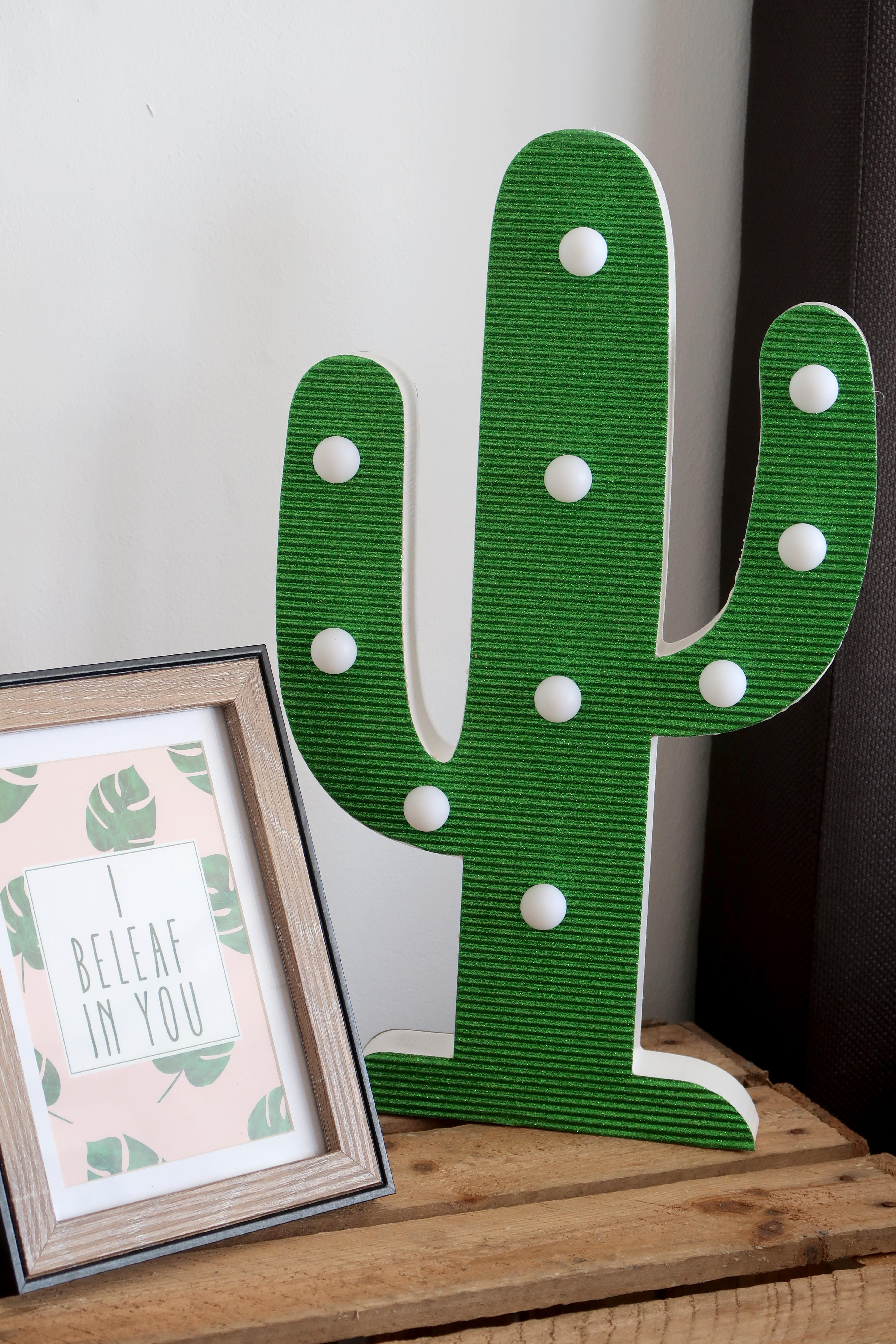 Lesara-cactus5